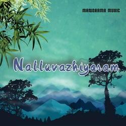 Nattuvazhi songs