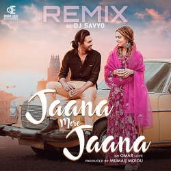 Jaana Mere Jaana (Remix) songs