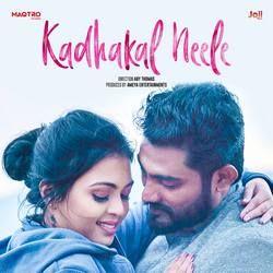 Kadhakal Neele songs