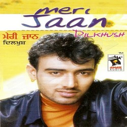 Listen to Heer Malki songs from Meri Jaan