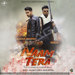 Listen to Naam Tera (The Revenge of Thokda Reha) songs from Naam Tera (The Revenge of Thokda Reha)