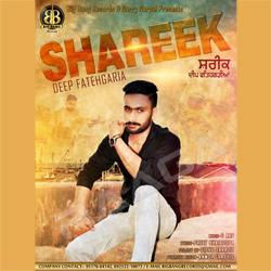 Listen to Shareek songs from Shareek