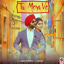 Listen to Tu Mera Ve songs from Tu Mera Ve
