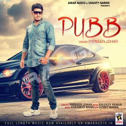 Pubb songs