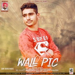 Wall Pic songs