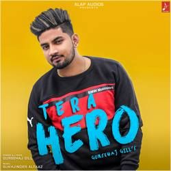 Tera Hero songs