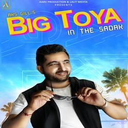 Big Toya In The Sadak songs