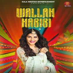 Wallah Habibi songs
