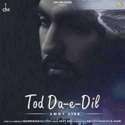 Tod Da E Dil songs