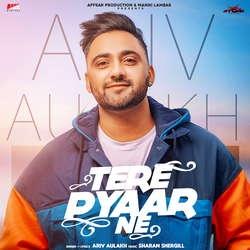 Tere Pyar Ne songs