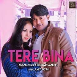 Tere Bina songs