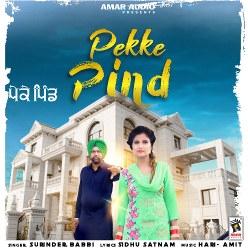 Pekke Pind songs