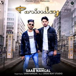 Parindey songs