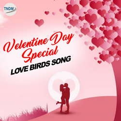 Listen to Saah Chalde Naal Tere songs from Valentine Day Special Love Birds Song