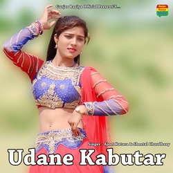 Udane Kabutar songs