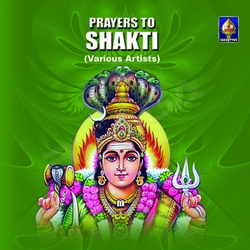 Listen to Vedoktam Ratri Suktam songs from Prayers To Shakti
