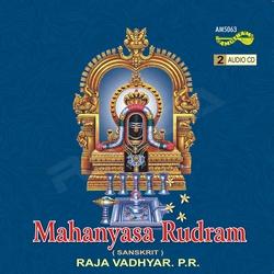 Listen to Moordnaadhi Padhantham Dhasadhanga Nyasam songs from Mahanyasa Rudram