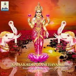 Kanakadharasthavamu songs