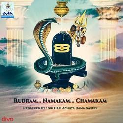 Rudram Namakam Chamakam songs