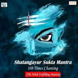 Shatangayur Sukta Mantra 108 Times Chanting -The Wish Fulfilling Mantra songs
