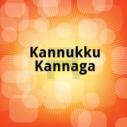 Listen to Kuliradikuthu songs from Kannukku Kannaga