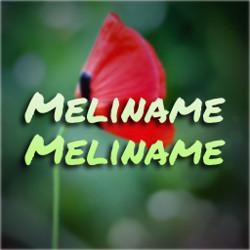Mellinamae Mellinamae songs