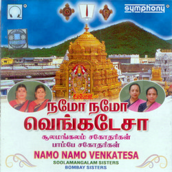 Listen to Bhoologa Vaikundam songs from Namo Namo Venkatesa