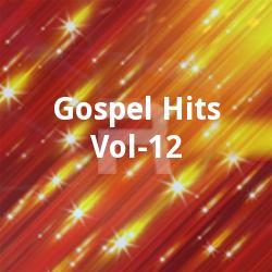 Gospel Hits - Vol 12