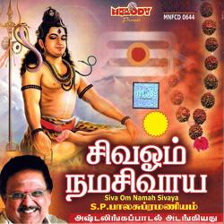 சிவ ஓம் நமஹ சிவாய songs
