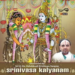 Srinivasa Kalyanam songs