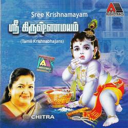Sree Krishnamayam songs