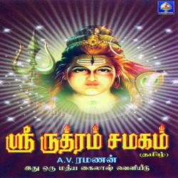Sri Rudram - Chamakam songs