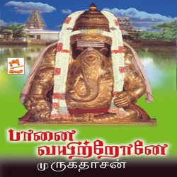 Listen to Appalam songs from Paanai Vayitronea