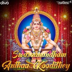 Swaraanandham songs