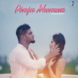 Pinju Manam songs