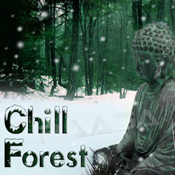 Listen to Jungle Signature songs from Chill Forest