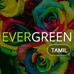 All Evergreen Radio