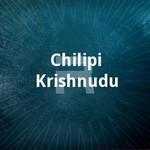 Chilipi Krishnudu songs