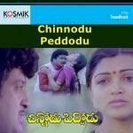 Chinnodu Peddodu songs