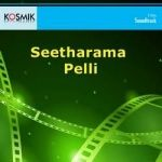 Seetharama Pelli songs