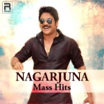 Nagarjuna Mass Hits - Vol 2 songs