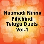 Naamadi Ninnu Pilichindi Telugu Duets - Vol 1 songs