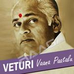 Vetrui Vaana Paatalu songs