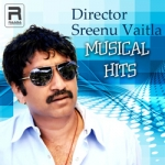 Director Sreenu Vaitla Musical Hits songs