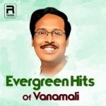 Evregreen Hits Of Vanamali songs