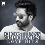 Choosthunna - Gopichand's Love Hits songs