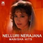 Nelluri Nerajana - Manisha Hits songs