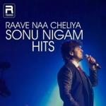 Raave Na Cheliya (Sonu Nigam Hits) songs