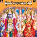 Srimannarayana Hari - Rahul Nambiar songs