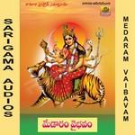 Medaram Vaibavam songs